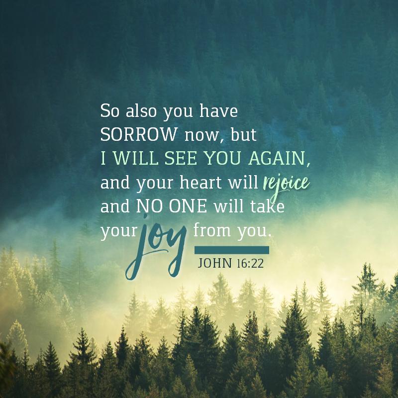 John 16:22