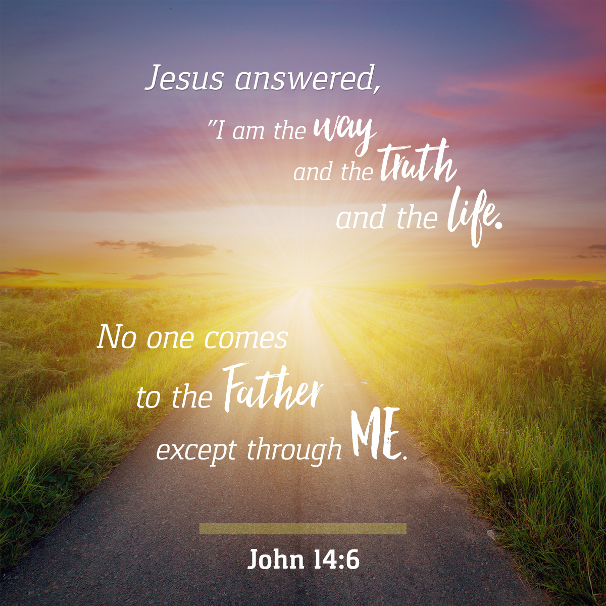 John 14:6 - Daily Verse