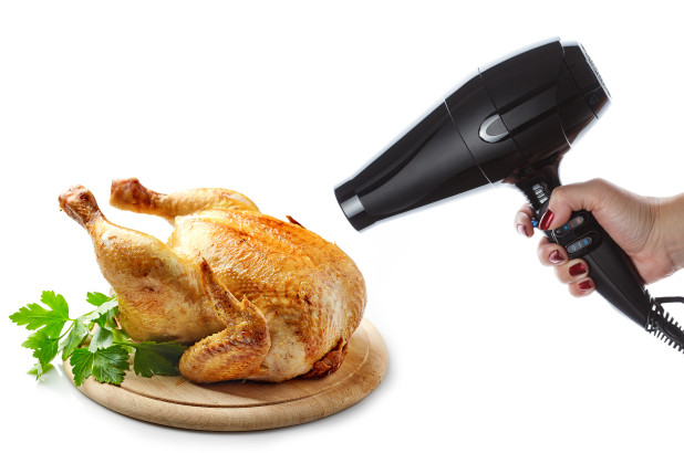 Use That Hair Dryer to Cook That Chicken