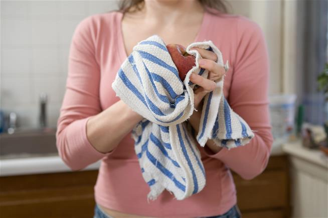 Kitchen Towels Are Dirtier Than You Think