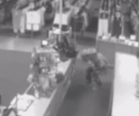Burglar in Dinosaur Mask Caught on Video Robbing Store