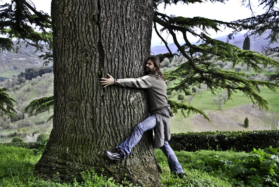 More 'Ecosexual' Are Having Sex with Trees