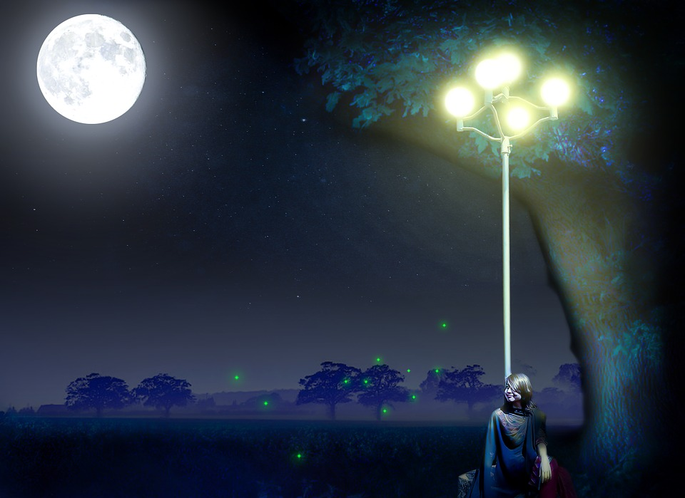 Fireflies Twinkle to Let Bats Know They Taste Like Garbage