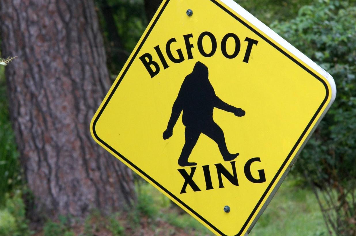 North Carolina Town Declares Bigfoot Their Official Animal