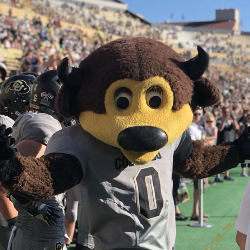 The University of Colorado's Mascot Chip the Buffalo Shot Himself in the Groin With a T-Shirt Gun [VIDEOS]