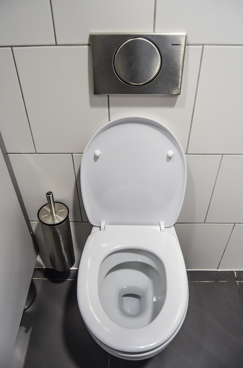 "The Dangers Of ""Toilet Plume"" And How To Prevent It"