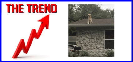 The Trend: What's That On The Roof?