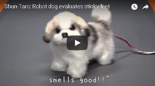 A Japanese Robot Dog That Sniffs Your Feet