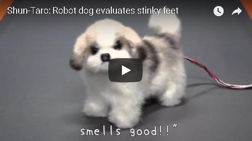 A Japanese Robot Dog That Sniffs Your Feet