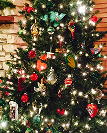 The Story Our Christmas Tree Tells