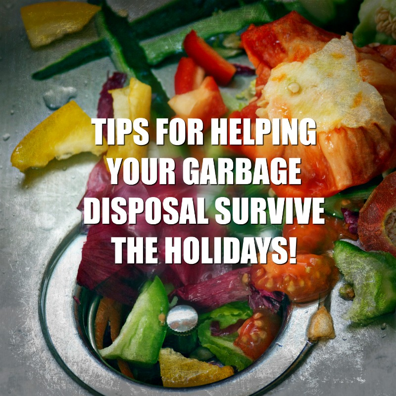 Tips For Helping Your Garbage Disposal Survive the Holidays