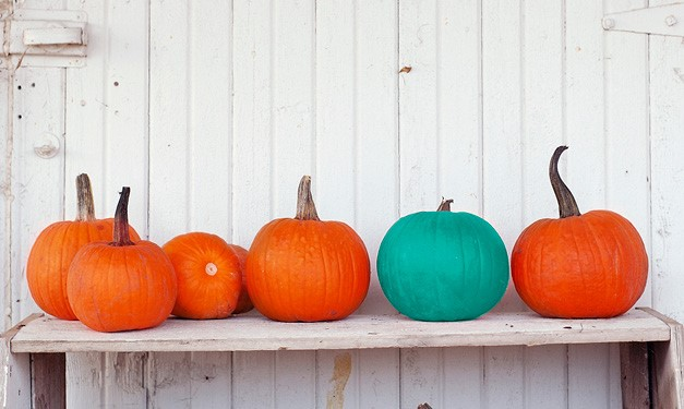 Have You Heard About the Teal Pumpkin Project?