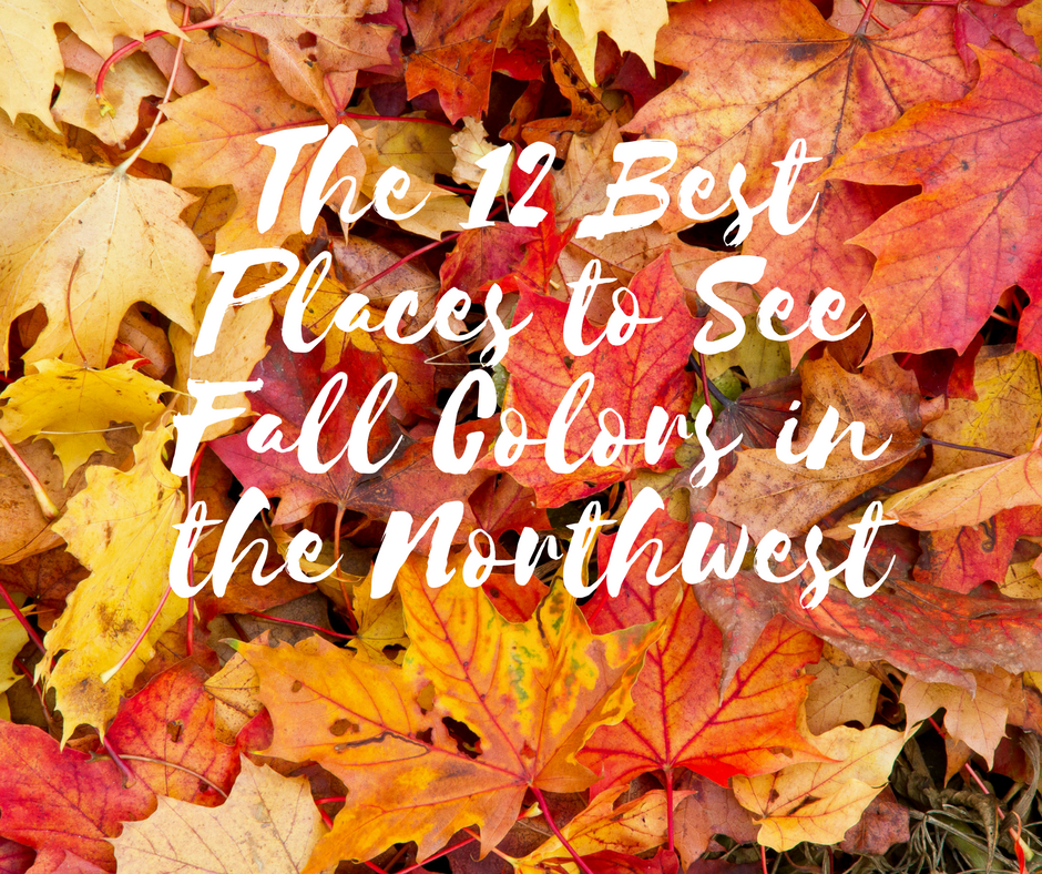 Off The Beaten Path: The 12 Best Places to See Fall Colors in the Northwest