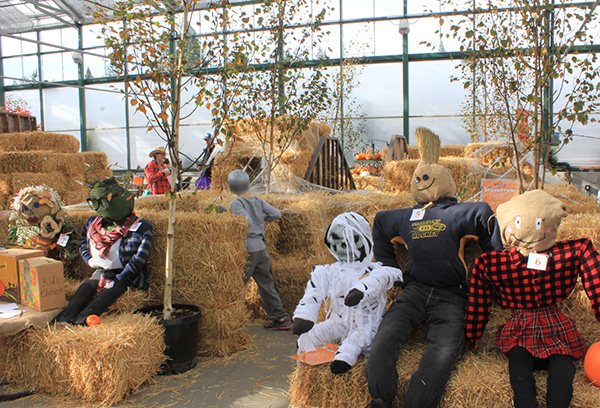 Come Enjoy Sky Nursery S 8th Annual Harvest Festival From 11 00am 4 00pm On October 21st
