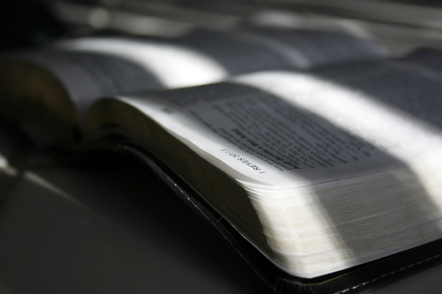 Pastor's Perspective: Trust the Gospel