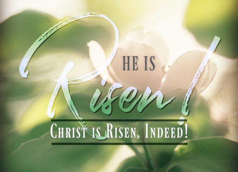 8-Day Easter Devotional: He Is Risen (Day 8)