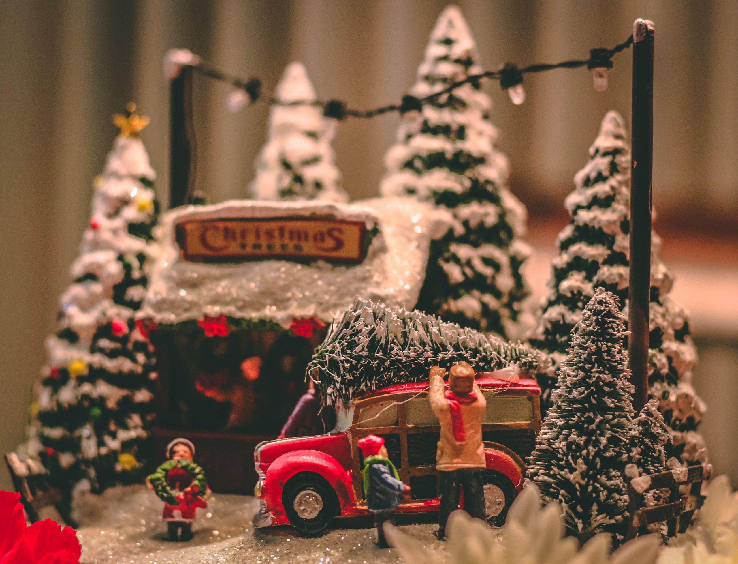 christmas at sky nursery