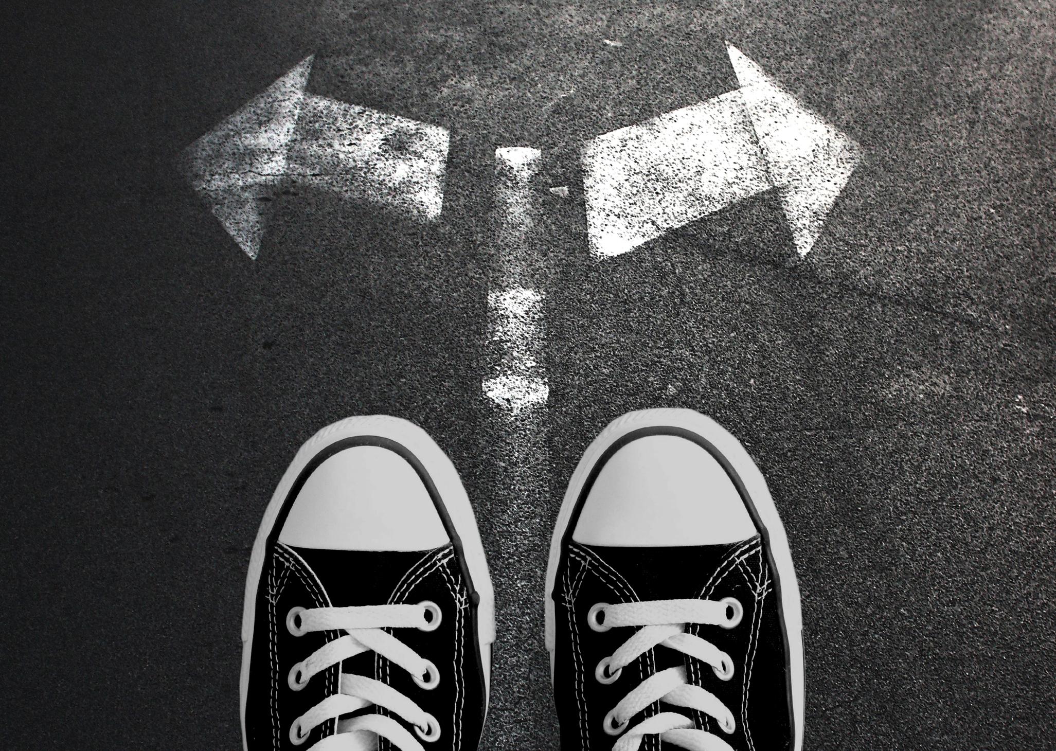 Navigating Education Decisions