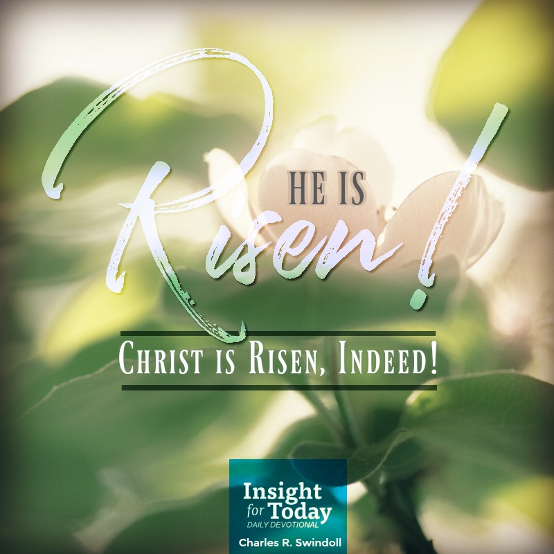 Risen, Indeed