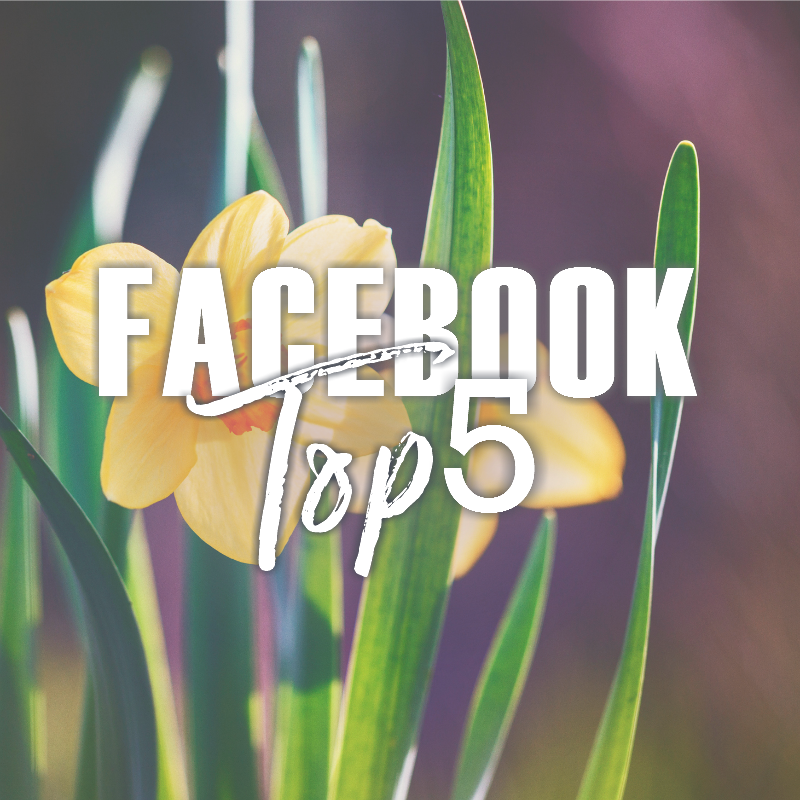 Facebook Top 5 (04/14-04/20)