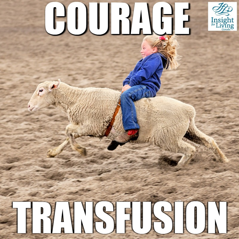 Daily Devotion: Courage Transfusion, Part Four