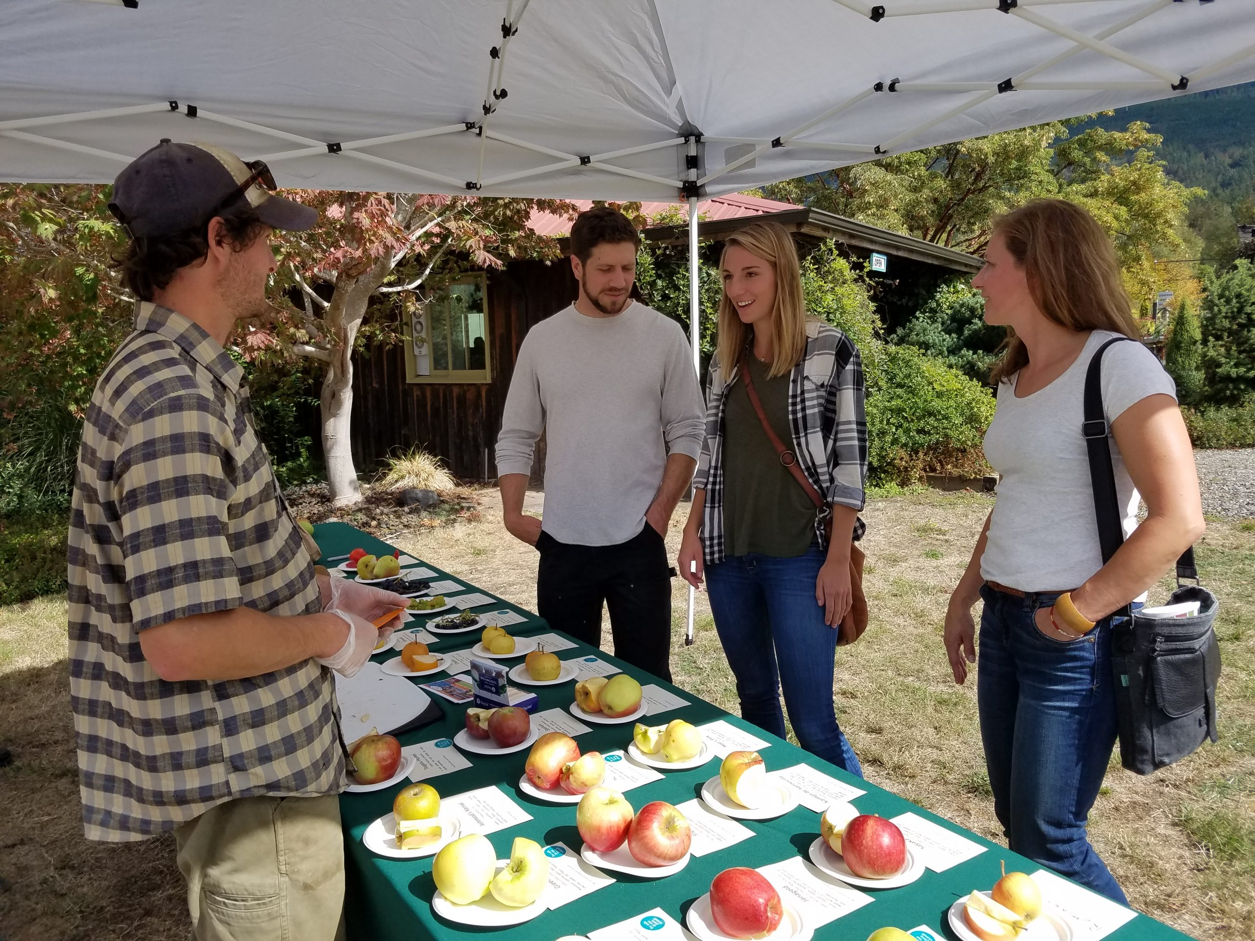 Off the Beaten Path: Cloud Mountain's Annual Fall Fruit Festival