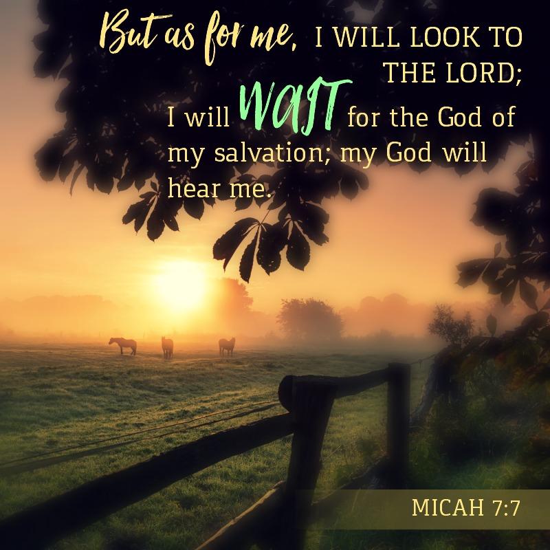Micah 7:7-