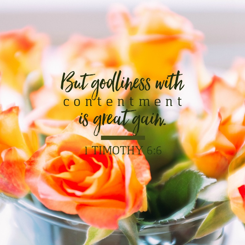 1 Timothy 6:6