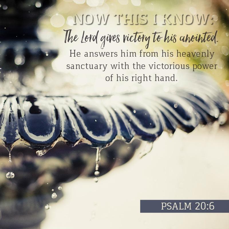 Psalm 20:6
