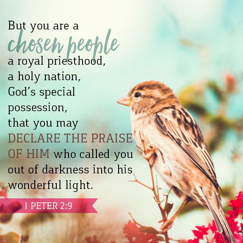 1 Peter 2:9-
