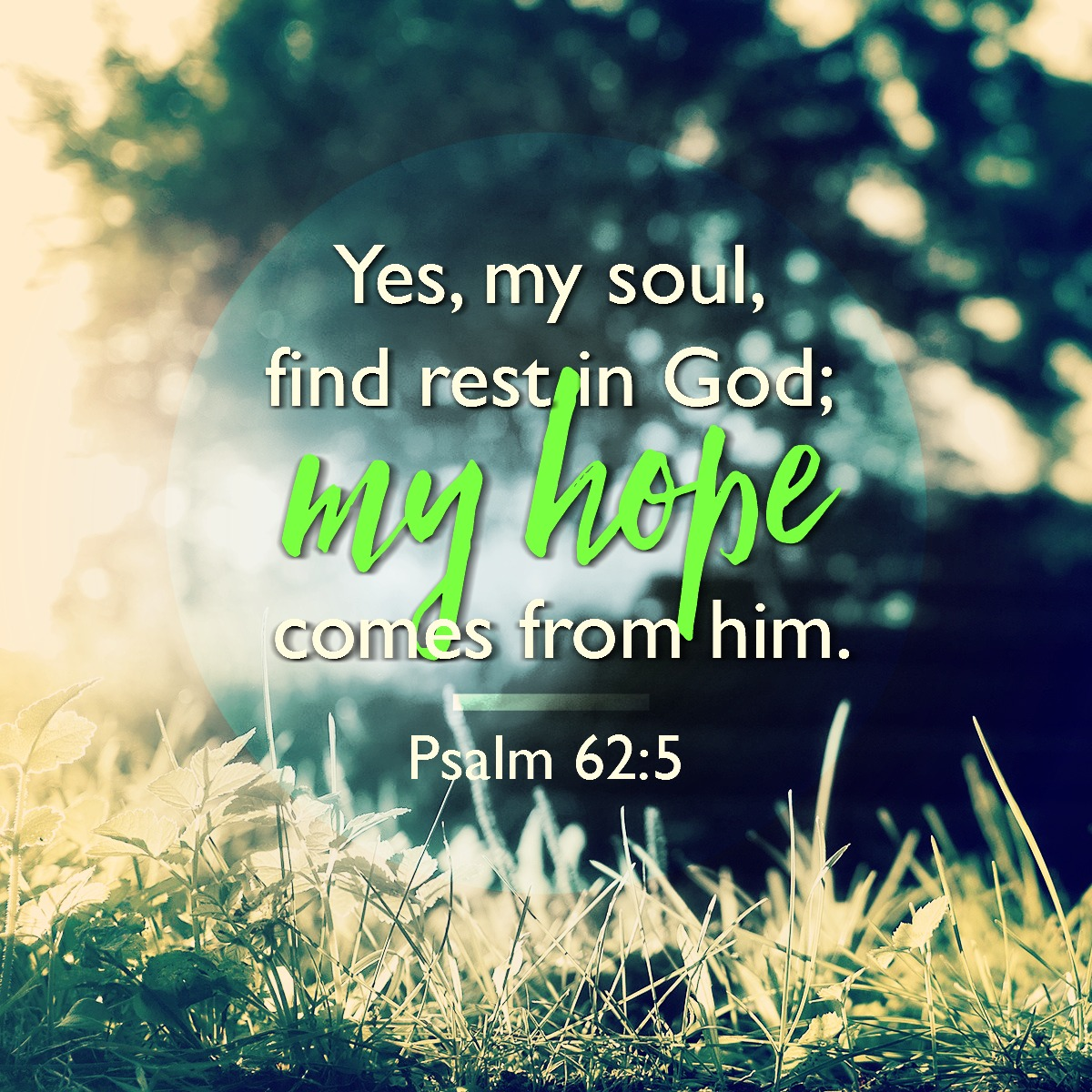 Psalm - 62:5