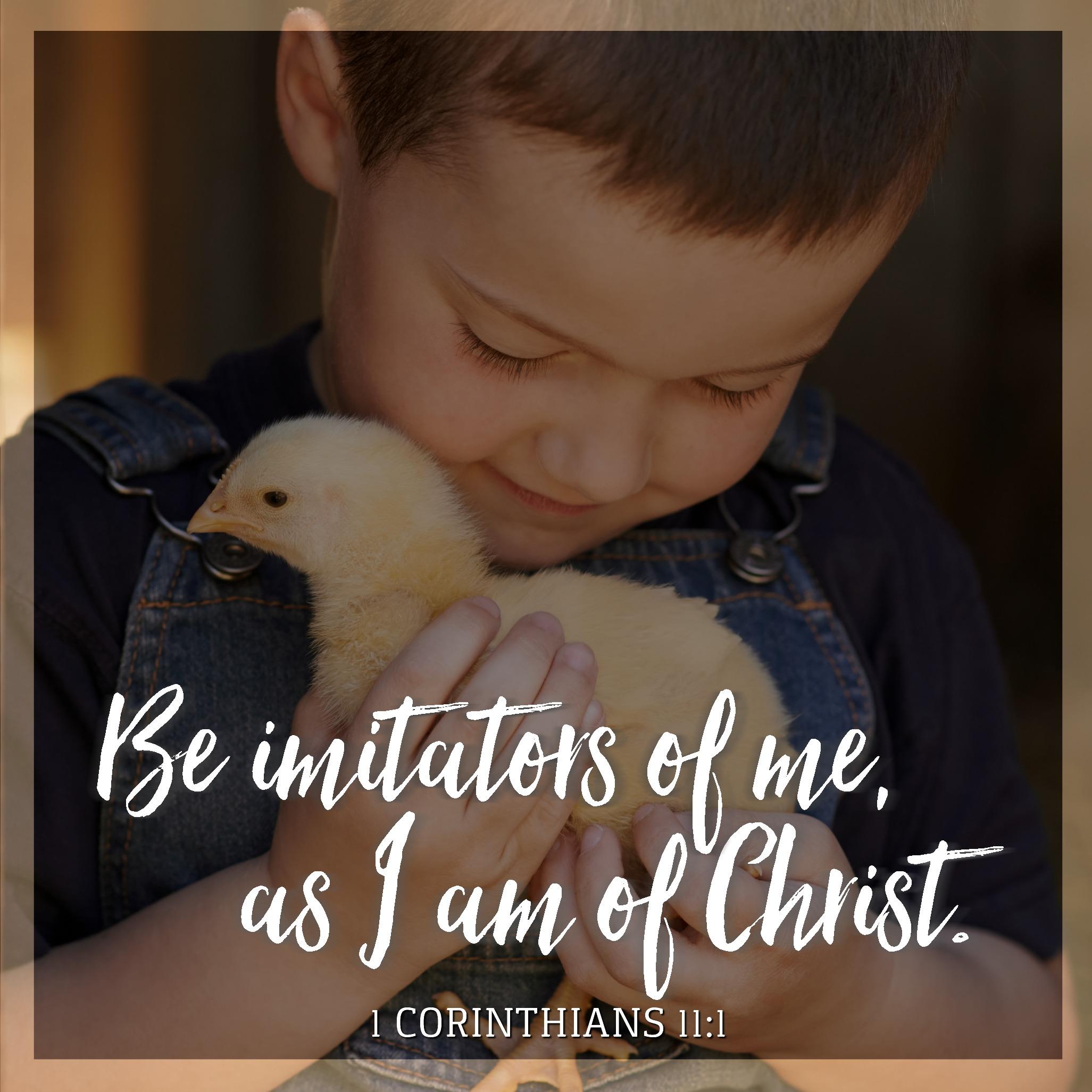 1 Corinthians 11:1