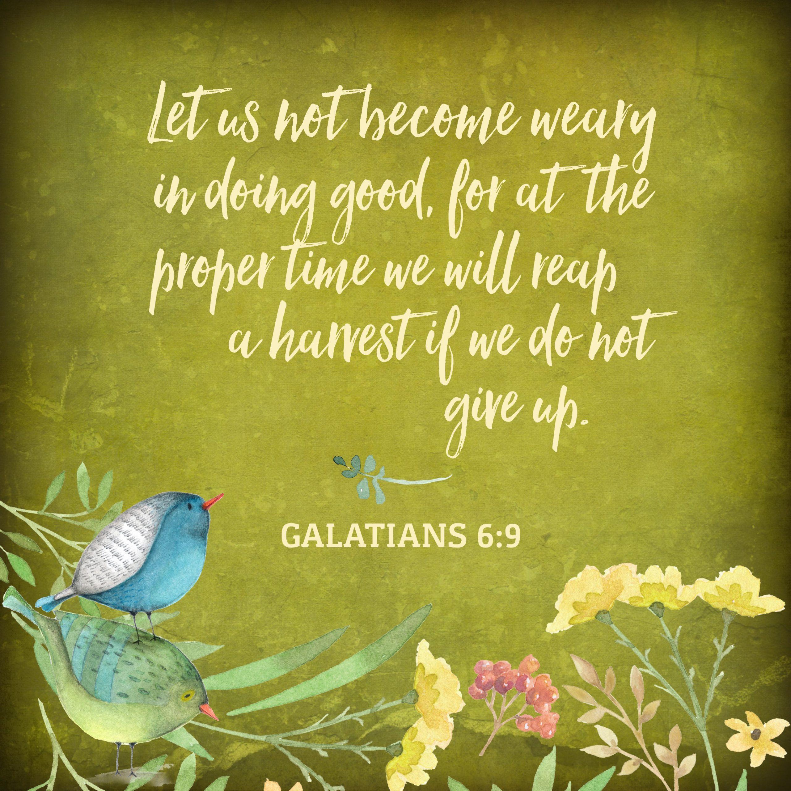 May 24: Galatians 6:9
