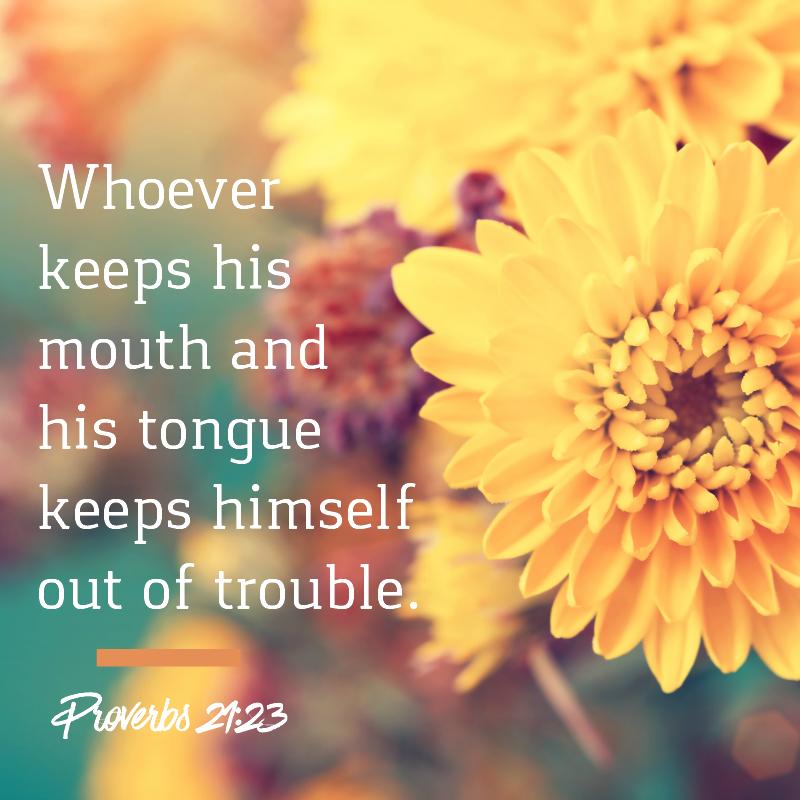 Daily Verse: Proverbs 21:23