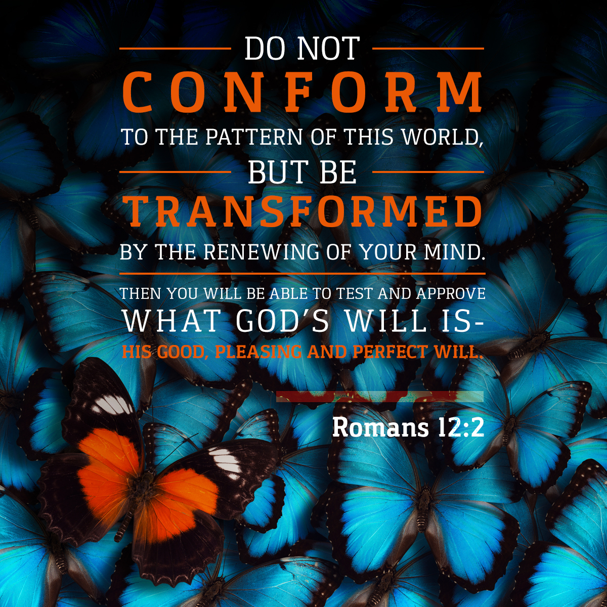 Romans 12:2 - Daily Verse