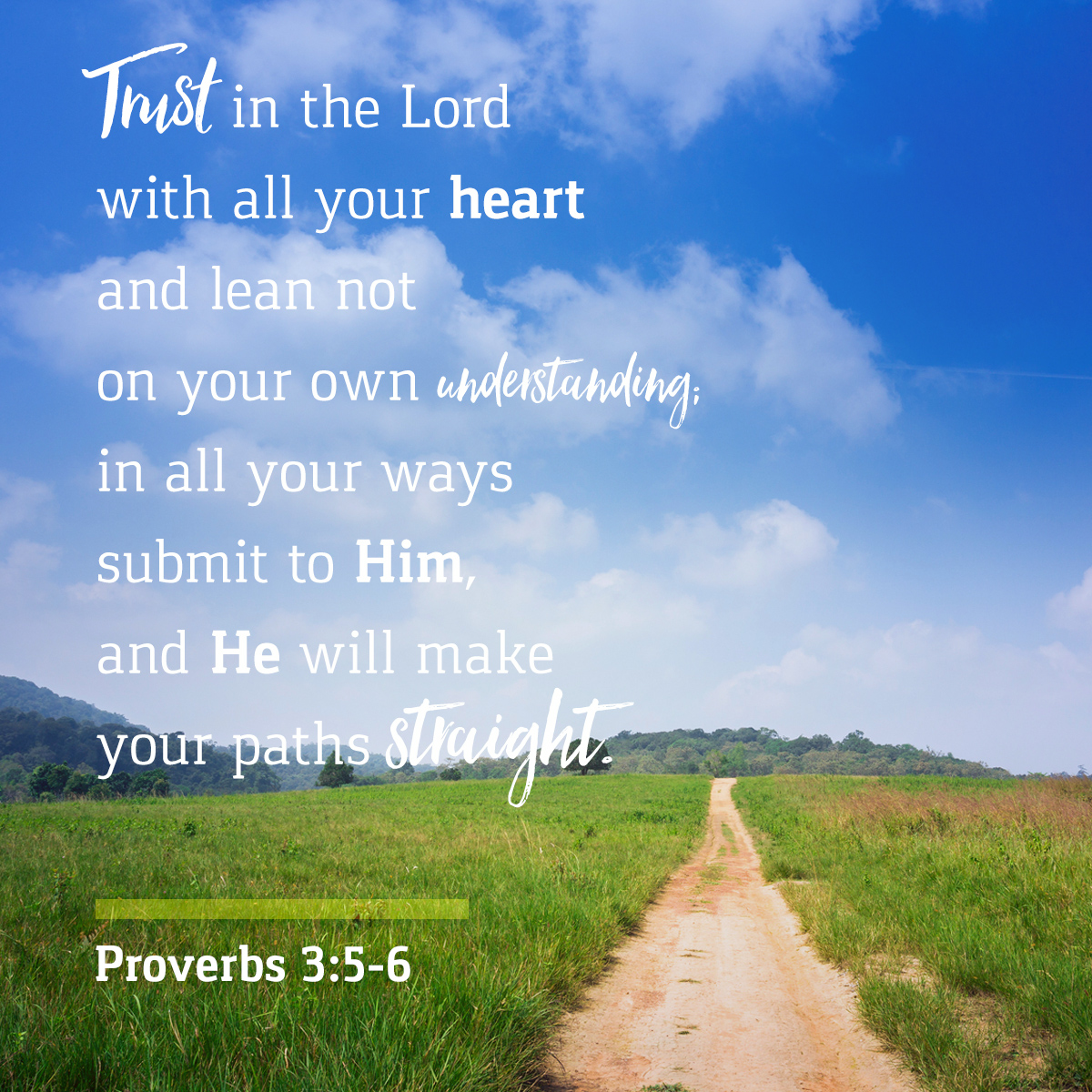 Proverbs 3:5-6 - Daily Verse