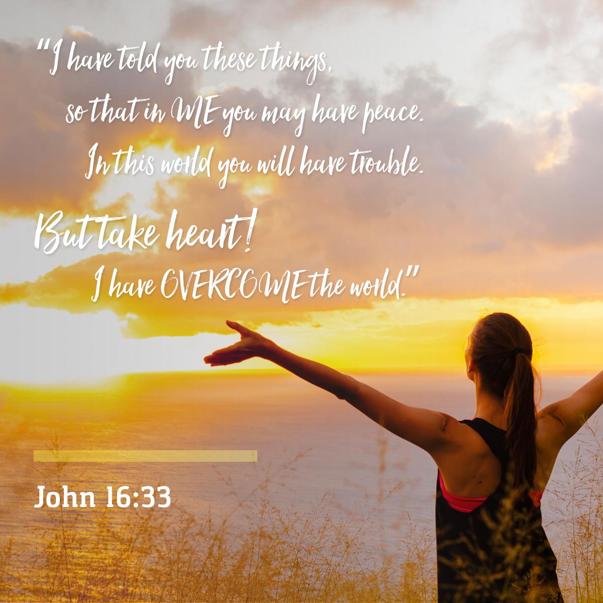 John 16:33 - Daily Verse