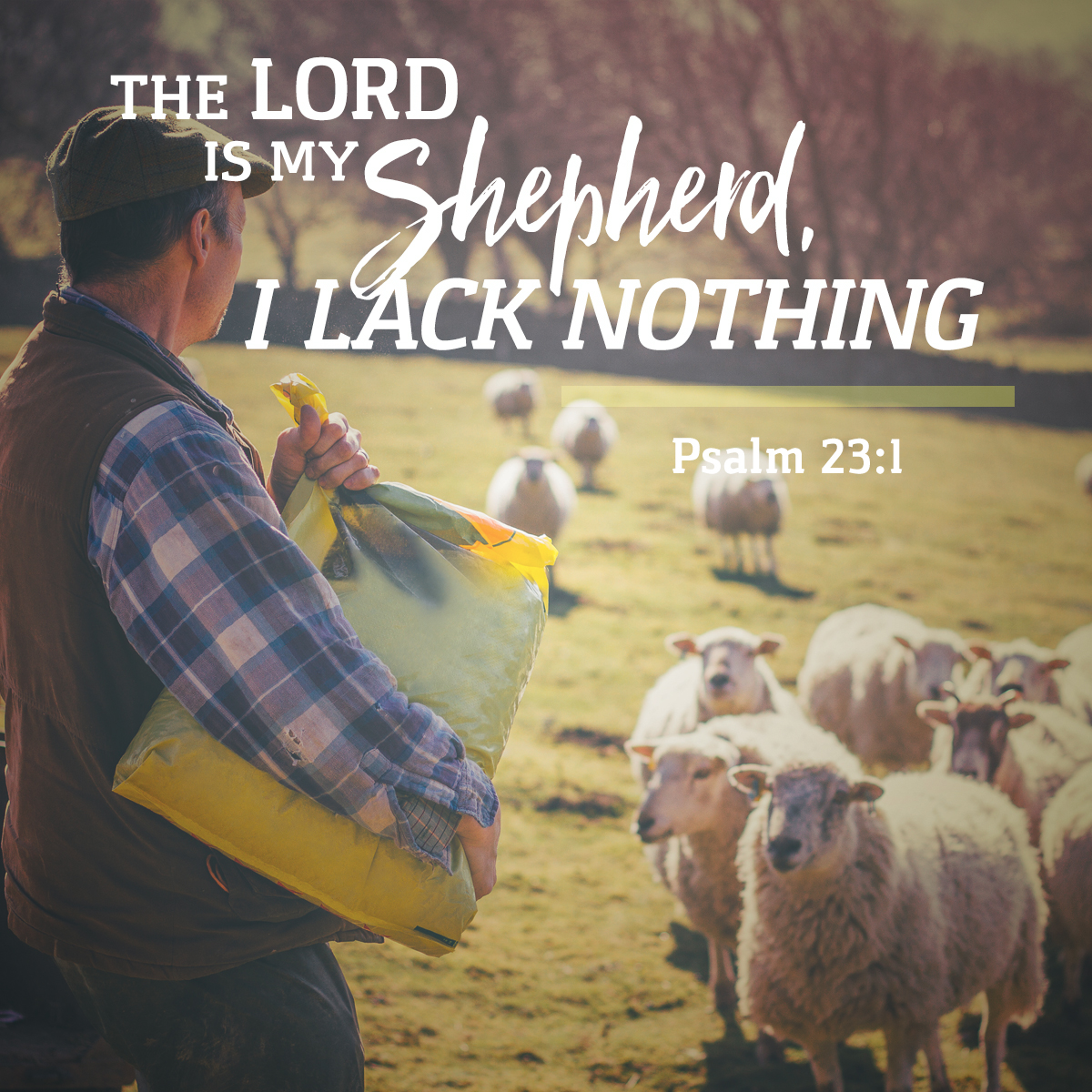 Psalm 23:1 - Daily Verse