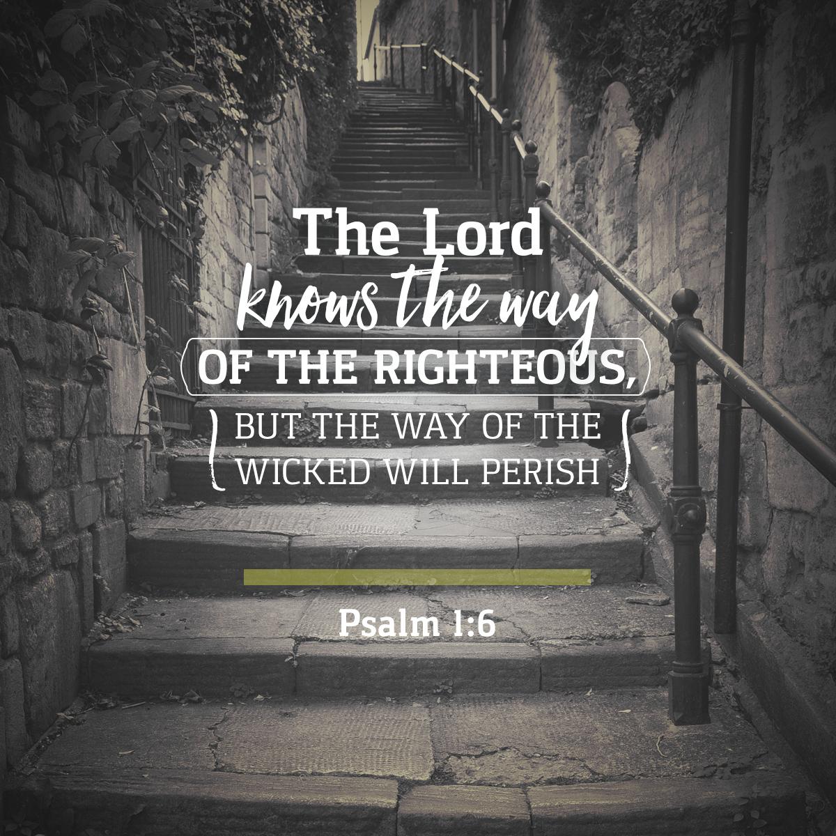 Psalm 1:6