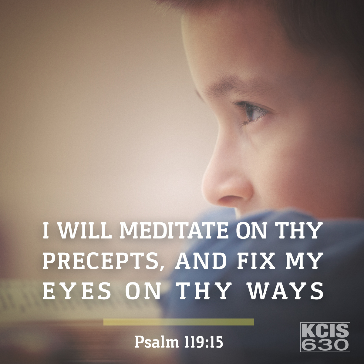 Psalm 119:15 - Daily Verse