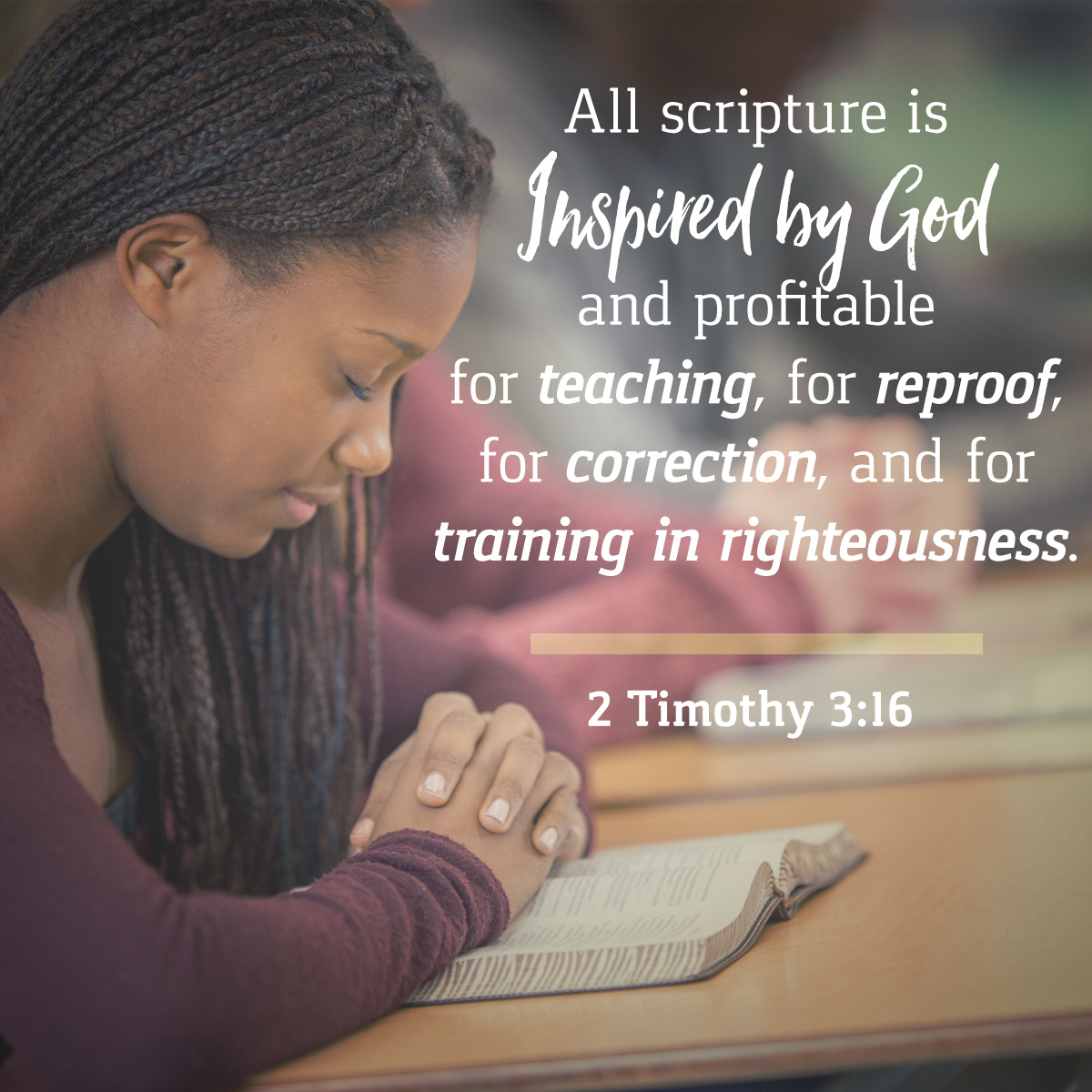 2 Timothy 3:16 - Daily Verse
