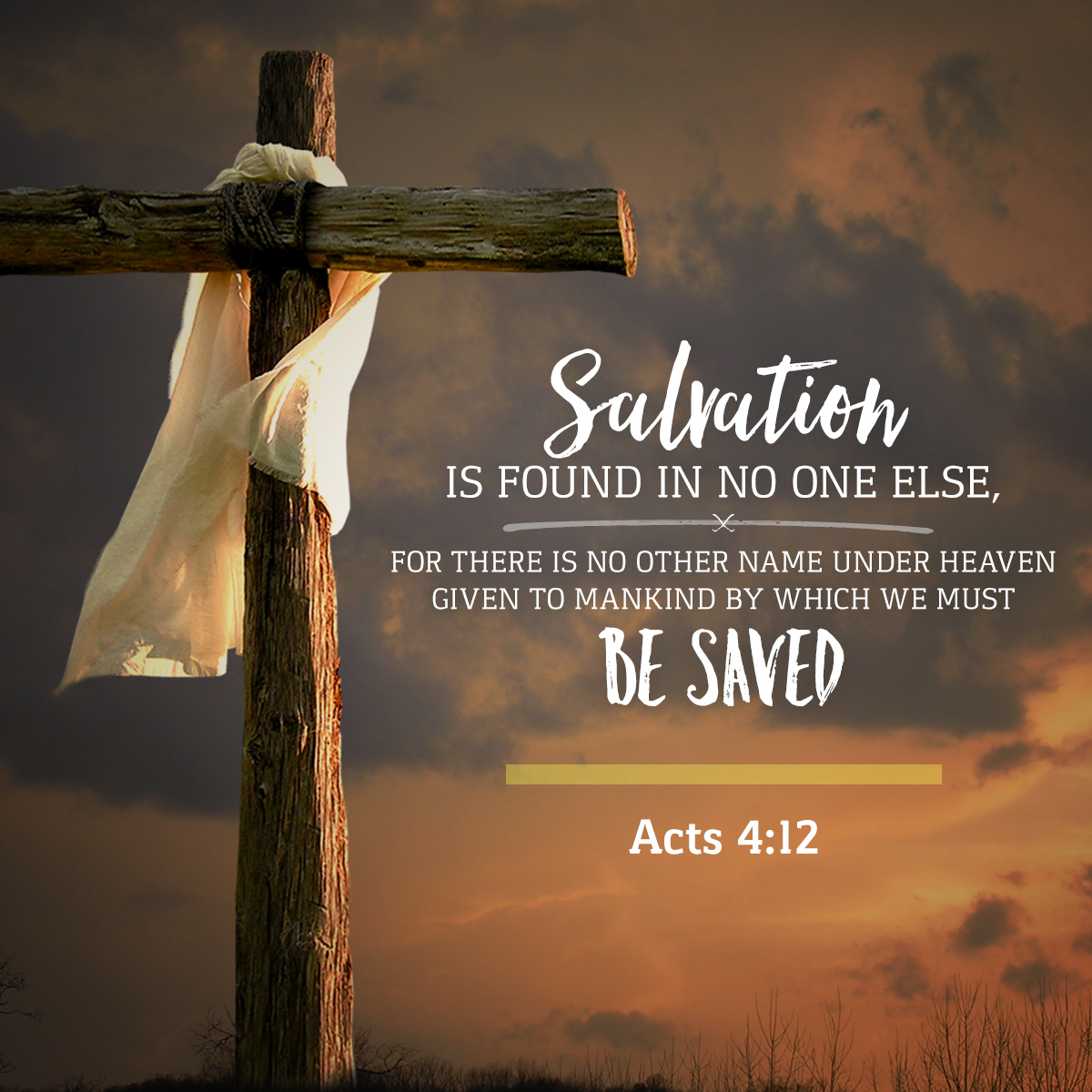 Acts 4:12 Daily Verse