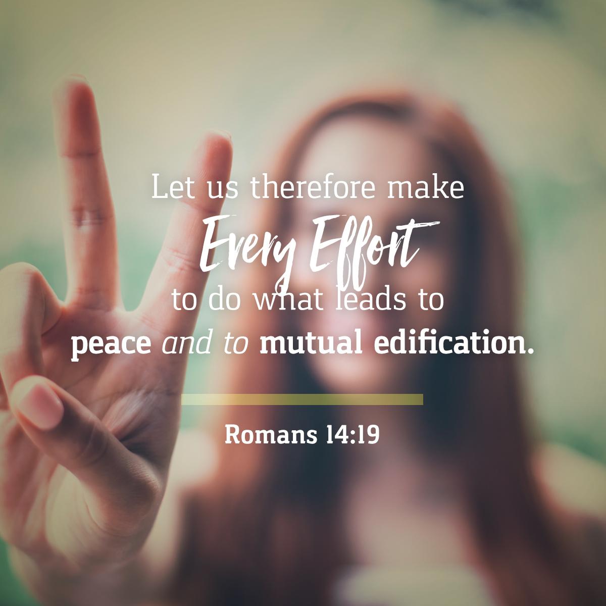 Romans 14:19 Daily Verse