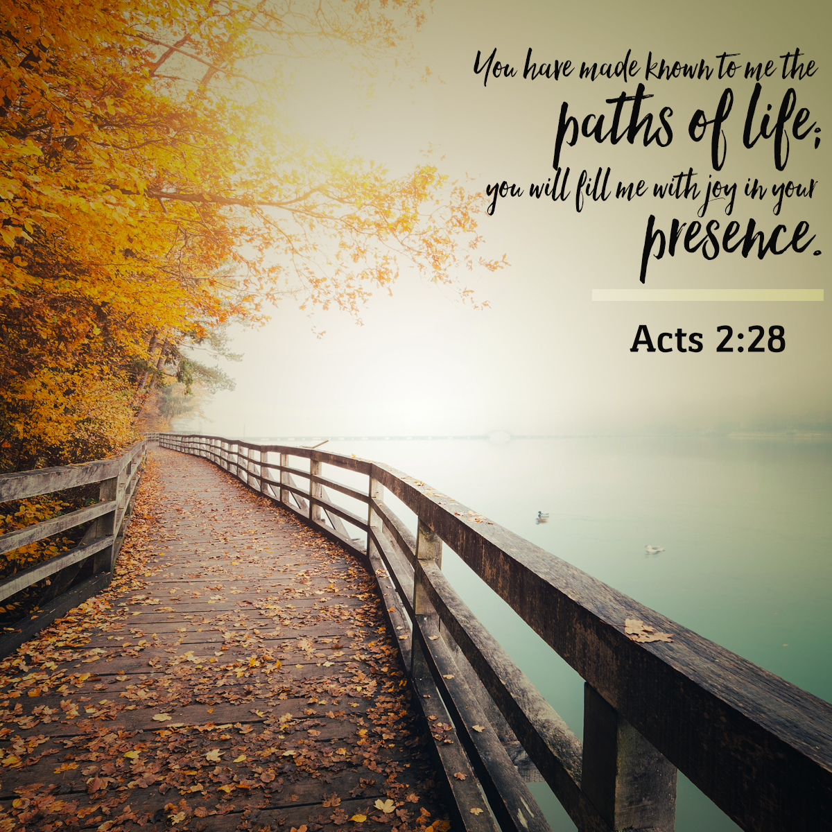 Acts 2:28