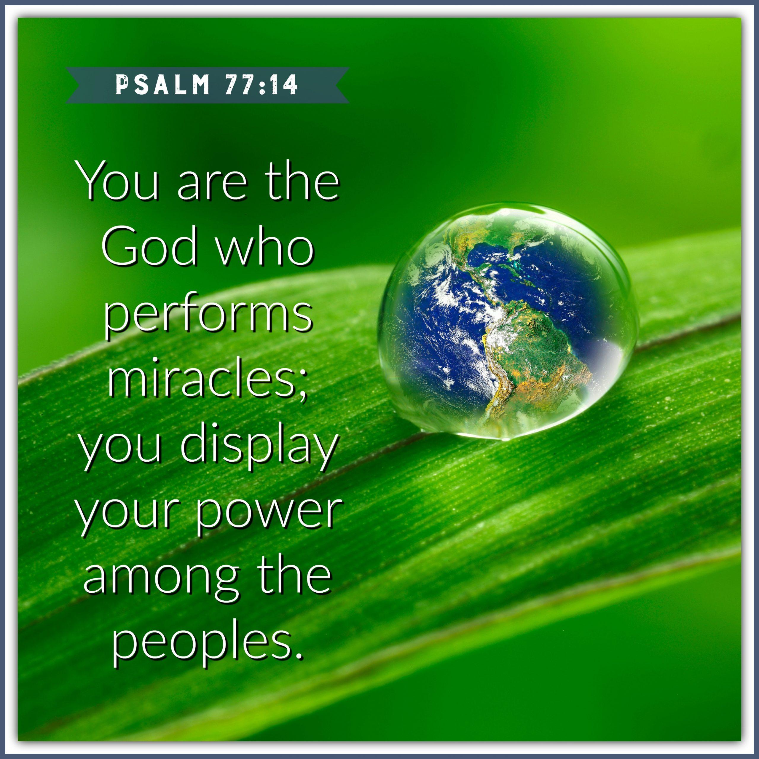 Psalm 77:14