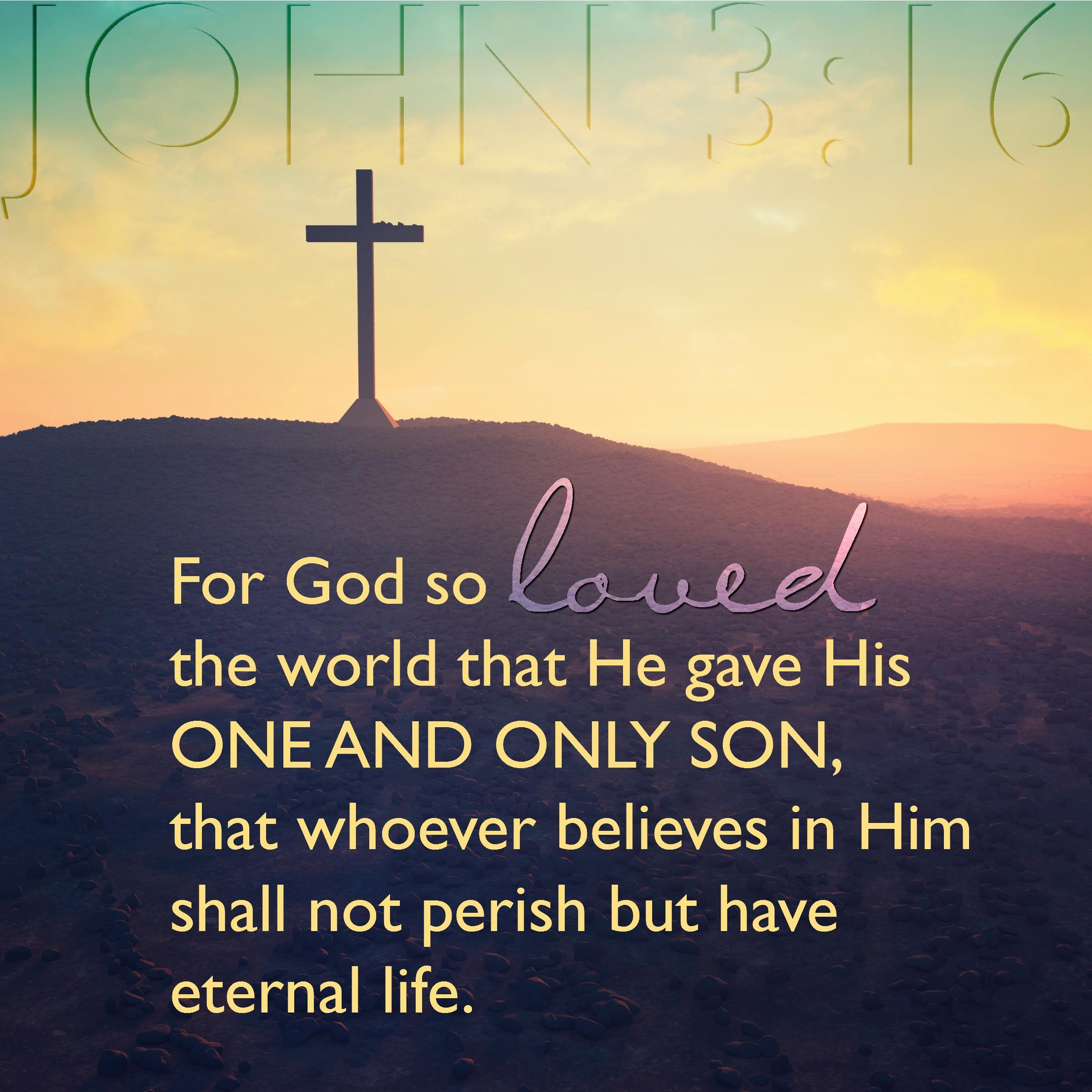 Daily Verse - John 3:16