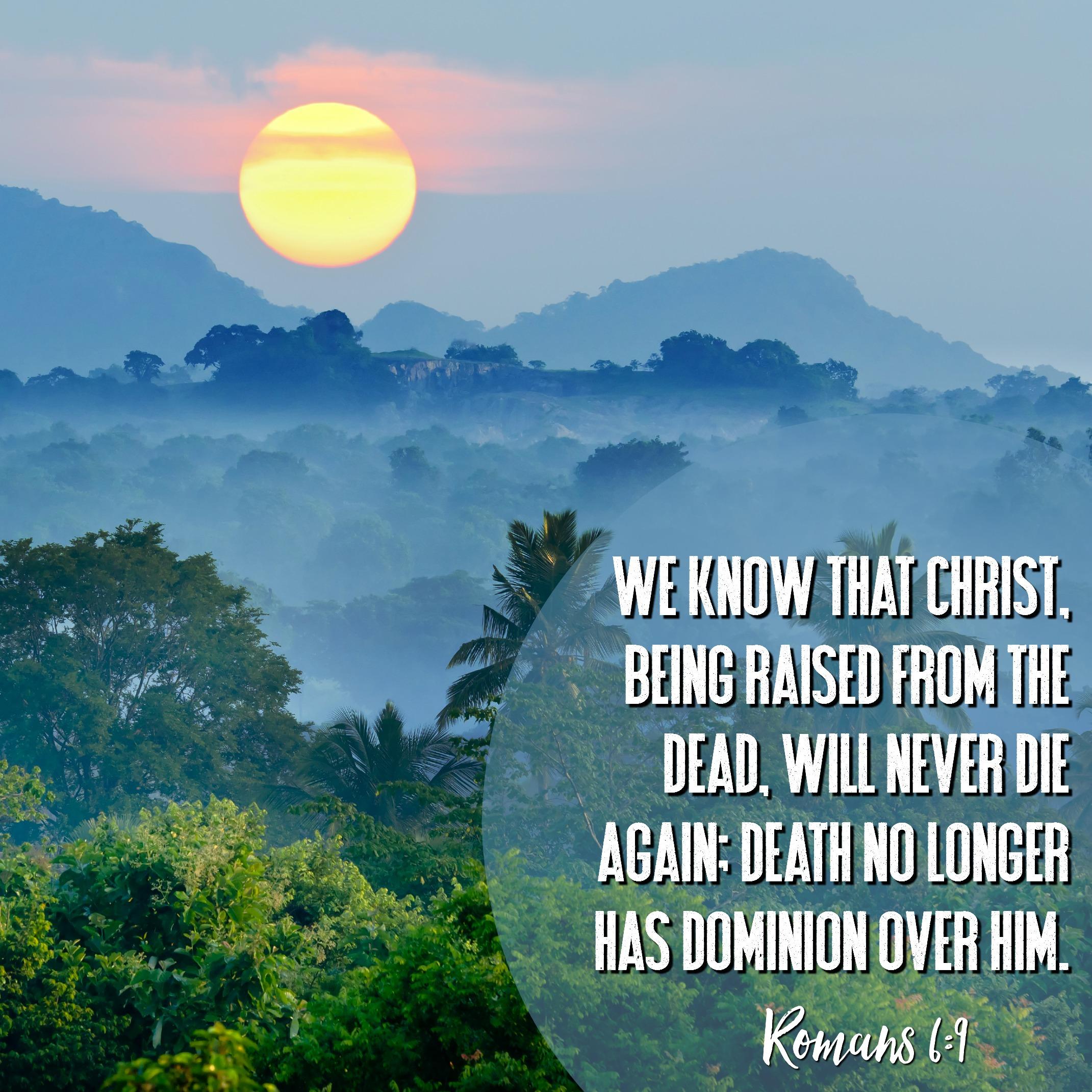 Daily Verse - Romans 6:9