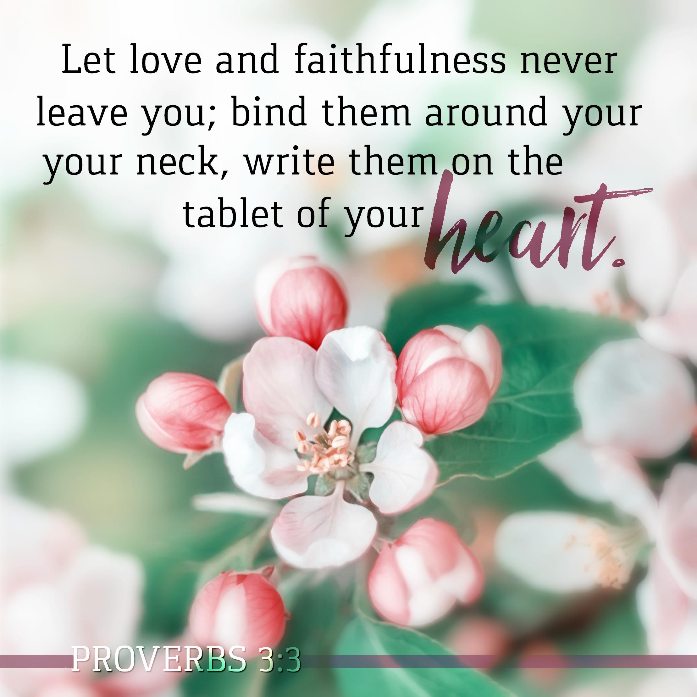 Proverbs 3:3