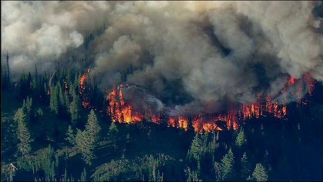 Eastern Washington Wildfire Relief
