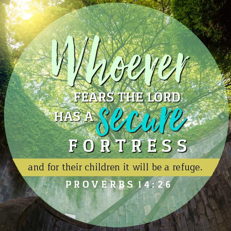Daily Verse: Proverbs 14:26